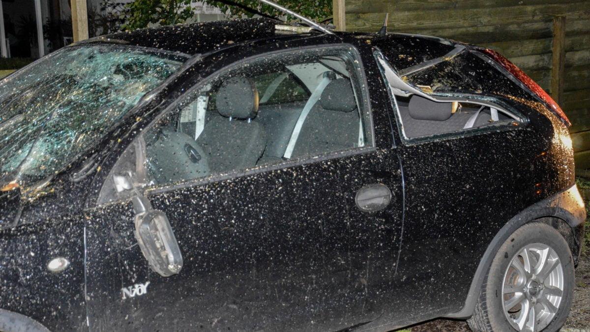 Boom waait om op geparkeerde auto in Darp