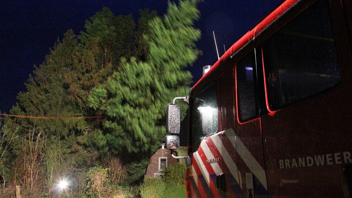 Boom aan de Oosterpaasloërweg zorgt voor gevaar voor naastgelegen woning in Paasloo