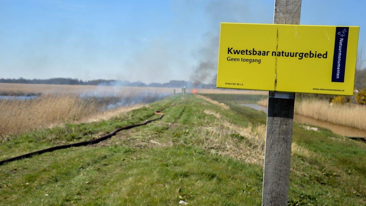 Rietbrand snel bedwongen, brandweer voorkomt erger