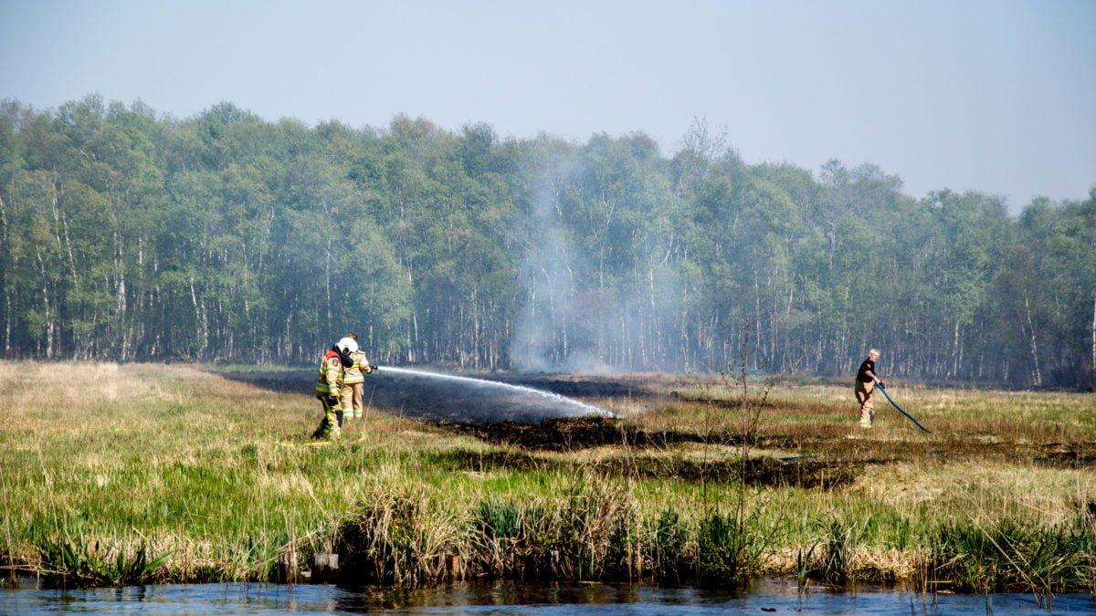 Brandweer rukt uit voor grote rietbrand in Ossenzijl