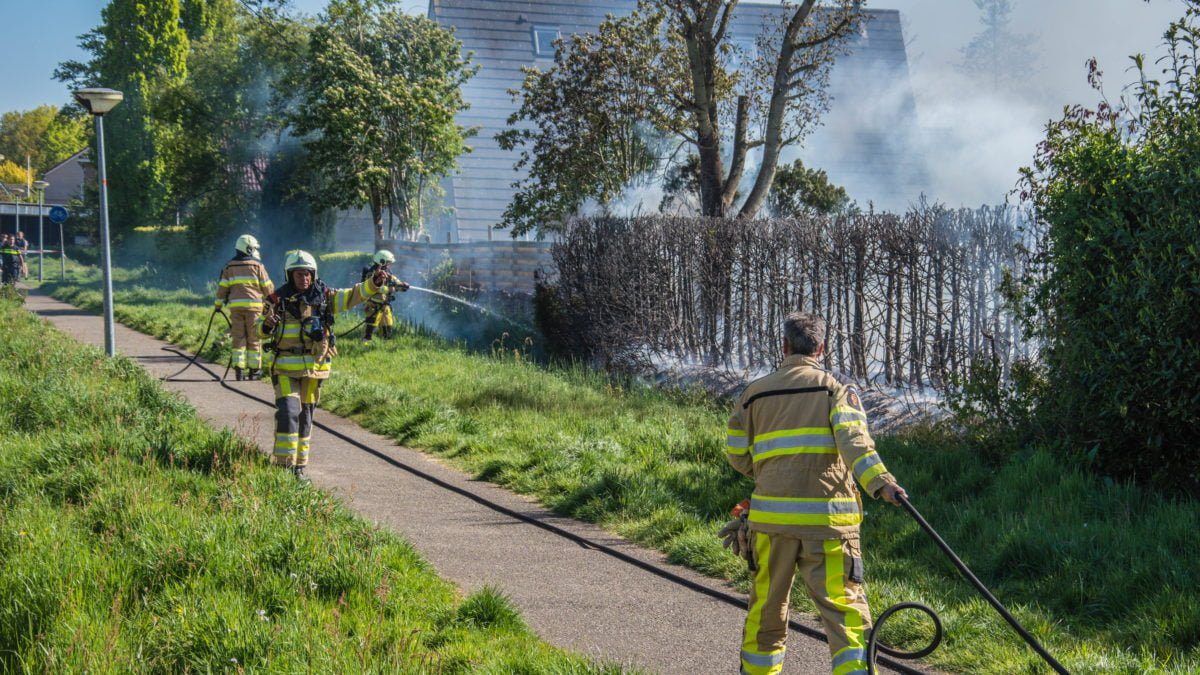 Coniferen heg verwoest door brand in Steenwijk