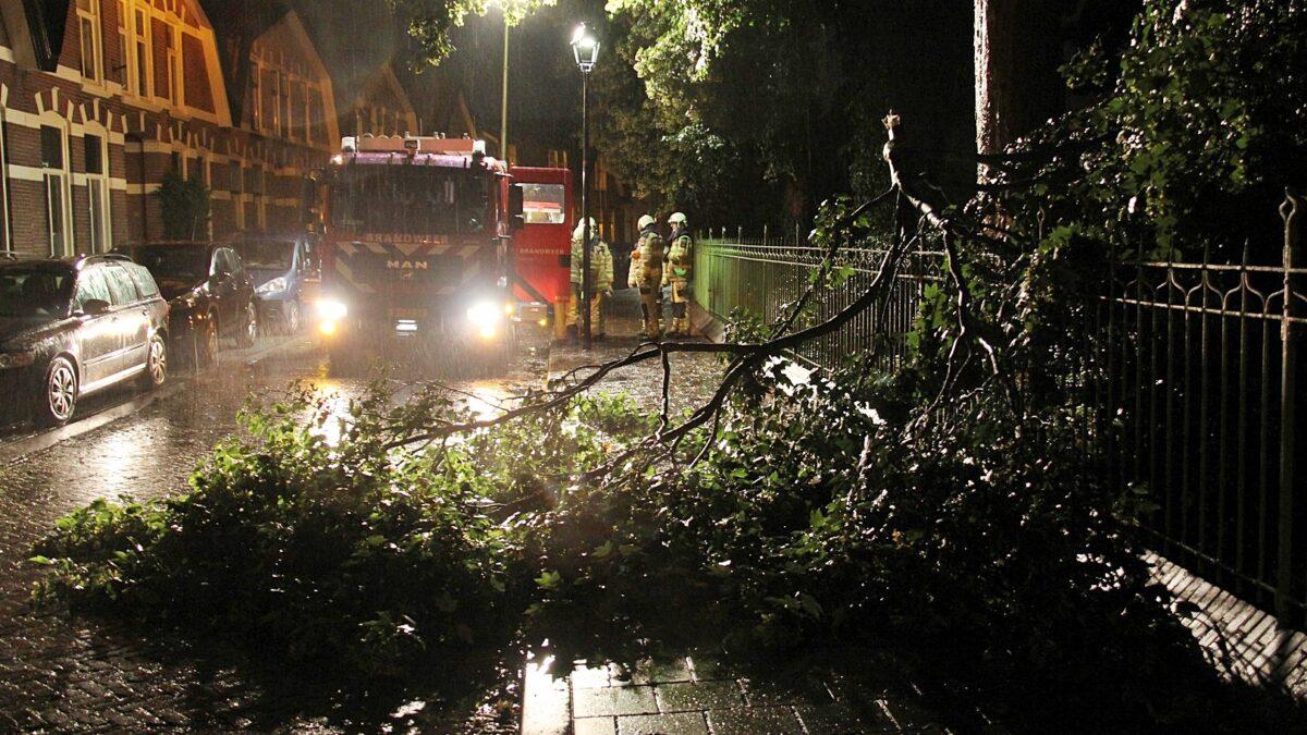 Stormschade aan de Gasthuislaan in Steenwijk