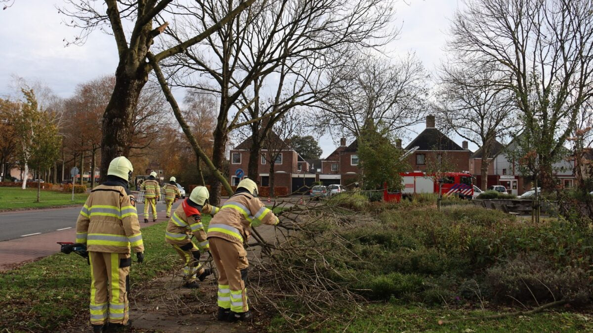 Brandweer van Steenwijk gealarmeerd voor loshangende tak