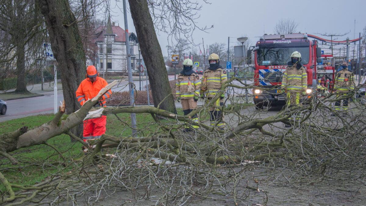 Brandweer rukt uit voor afgebroken tak aan Tramlaan