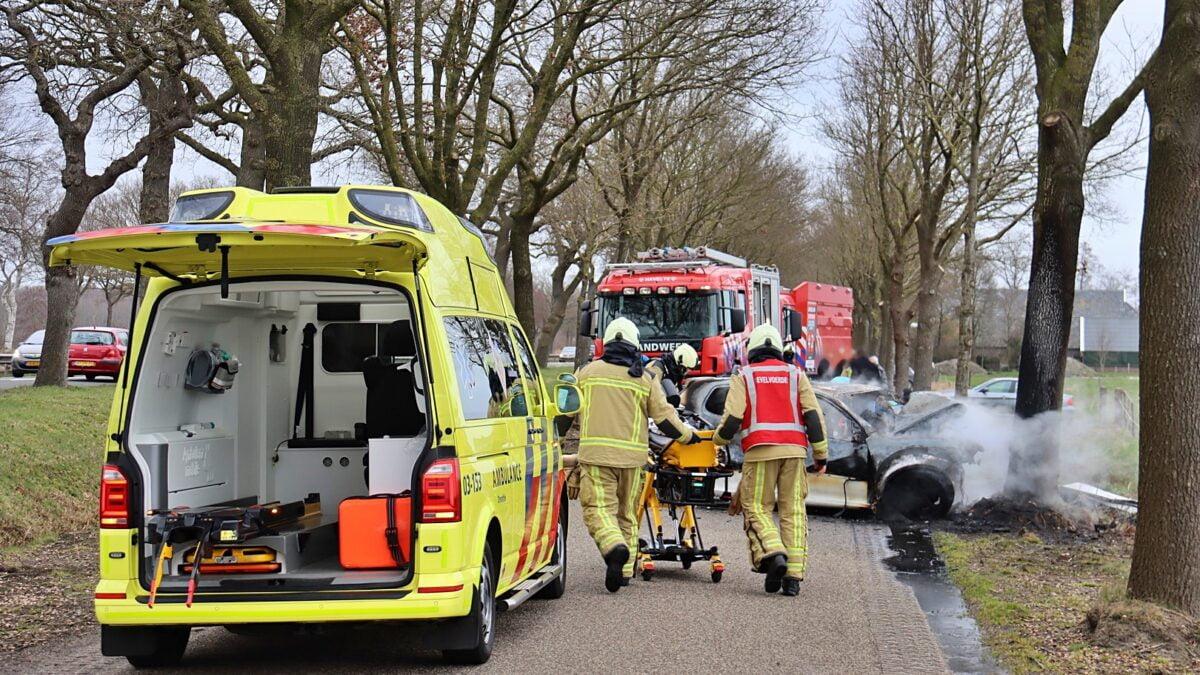 Auto vliegt in brand na botsing met boom aan de Meenteweg in Havelte (Video)