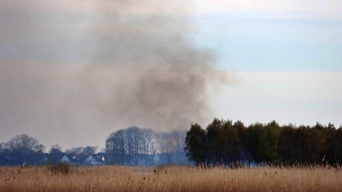 Brand in natuurgebied nabij de Valsche Trog in Blokzijl